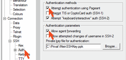 Agent forwarding Einstellungen PuTTY
